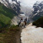 Horse tour glacier